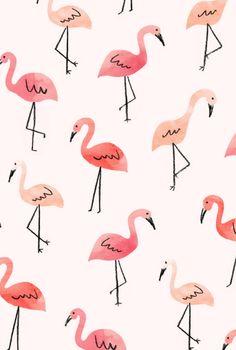Flamingos   Lauren Conrad, August 2015