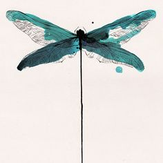 Graphic artwork shop specialized in emerging art Art And Illustration, Dragonfly Illustration, Illustrations, Dragonfly Art, Dragonfly Tattoo, Watercolor And Ink, Watercolor Paintings, Watercolors, Painting Inspiration
