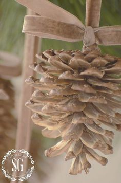 give pinecones a beautiful bleached look. So easy! And amazing! :: Hometalk