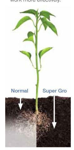 Makes Water Wetter! Super Gro helps make the best use of water by reducing the surface tension thus 'making it wetter', which helps ensure: • Optimal soil penetration • Reduction of run-off and evaporation More water reaches the roots of the plant and stays there – optimising plant growth, in less time!