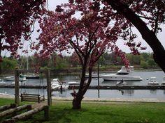 Harbor Island Park Google Image Result for http://c718756.r56.cf2.rackcdn.com/22001/46527/2011-10-23/dfaf3532e8b1e9c634b9ee41b4f7f2ca.jpg