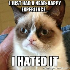 Hope that never, ever happens again. - Grumpy Cat