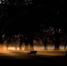Early morning in Hagley Park. A true #PocketsOfAwesome 📷 = @camillarutherford_photography 👍