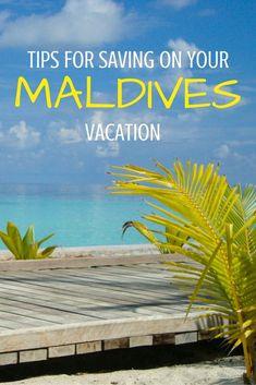 Tips for saving on your vacation to the incredible Maldives! | Travel Maldives | Maldives Travel Guide | Luxury Resorts Maldives | Maldives Honeymoon | Backpacking Maldives | Maldives On A Budget | Maldives Highlights | Maldives Budget Travel | Maldives Hikes | Maldives Top Attractions | Maldives Hiking | Top Things To Do In Maldives | Top Islands In Maldives | Top Sights Maldives | Maldives Diving | Best Beaches Maldives  The Maldives | Maldives Travel | Maldives Honeymoon | Maldives
