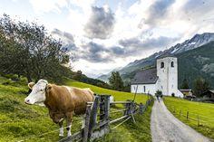 St. Nikolaus Church, Matrei, East Tyrol, Austria - My Instagram on https://www.instagram.com/roman.rogner.cz. #nikolaus #church #kirche #matrei #osttirol #easttyrol #east #tyrol #tirol #austria #oesterreich #osterreich #cow #krava #kuh #way #mountain #mountains