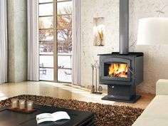 The Napoleon Independence wood stove provides the best value for your money, with clean burning and efficient EPA technology, reliability and performance. Linear Fireplace, Fireplace Tool Set, Fireplace Hearth, Fireplace Inserts, Hearth Rugs, Fireplace Screens, Foyers, Natural Gas Patio Heater, Budget