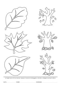 Blog scuola, Schede didattiche scuola dell'infanzia, La maestra Linda, Schede didattiche da scaricare, Autumn Activities For Kids, Math For Kids, Preschool Science, Teaching Activities, Leaf Coloring Page, Coloring Pages, Thanksgiving Crafts, Fall Crafts, 5 Senses Craft