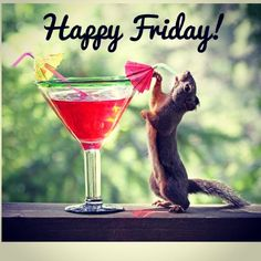 It is funny picture of a squirrel who is drinking juice to remove his thrust because of hot season. This attitude of squirrel made this picture more funny. Friday Weekend, Bon Weekend, Happy Weekend, Happy Day, Happy Hour, Friday Fun, Funny Friday, Friday Quotes Humor, Happy Friday Quotes