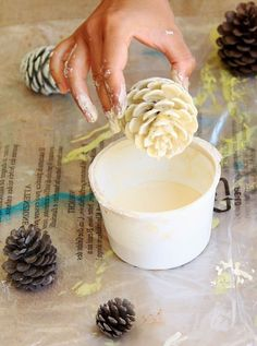 """Easiest 5 Minute 'Bleached Pinecones' {without Bleach!} Make beautiful """"bleached pinecones"""" in 5 minutes without bleach! Non-toxic & easy DIY pine cone craft, perfect for fall, winter, Thanksgiving & Christmas decorations! – A Piece of Rainbow White Pine Cone, Pine Cone Art, Pine Cone Crafts, Painting Pine Cones, Bleach Pinecones, Painted Pinecones, Easy Diy Crafts, Christmas Projects, Holiday Crafts"""