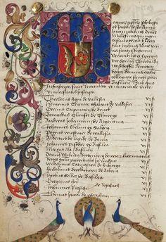 Theobald Westhofer, SS 1503 (108v) -- «Rektoratsmatrikel der Universität Basel» (Matriculation Register of the Rectorate of the University of Basel) [Universitätsbibliothek, AN II 3]