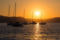 Boats at Sunset | Sailing Ships At Sunset Free Stock Photo - Public Domain Pictures