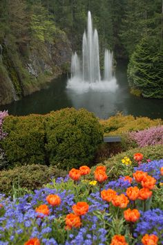 This is beautiful. If your ever up that way I would urge you to go. Depending on what time of the year.  akt   Butchart Gardens fountain, Victoria