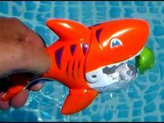 El Devora peces, Engullir  engullir. gobble gobble fishes.