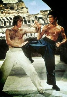 Bruce Lee vs Chuck Norris so my hubby got me to watch this for the first time & i was all ready for it until chuck took off his shirt, & then i threw up in my mouth a bit coughed & i think i spit out a hair ball of chuck norris' chest hair. ok that done.... what the hell is with the cat shots through out the fight scene? that was awesome by the way;)