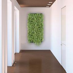 Architectural Supplements Plant Portrait - Living Wall Planter