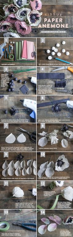 DIY Tissue Paper Anemone + Tutorial