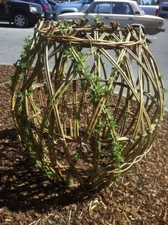 nice idea to make any form and let it overgrow with vegetation! Willow Fence, Basket Willow, Willow Weaving, Basket Weaving, Willow Furniture, Living Willow, Decoration Plante, Willow Branches, Landscaping