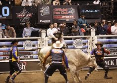 lots of PBR riders are safe, thanks to Dickies bull fighting team.