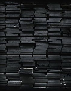 black painted wood / color inspiration / black and white / monochromatic / texture / pattern / nature / art /