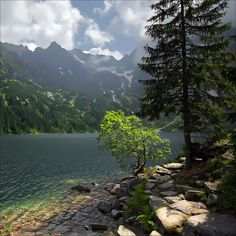 Tatras Mountains, Slovakia. You know, no one believes me when I say that Slovakia is beautiful. Well, eat it.