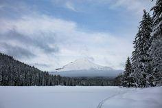 View of Mt Hood at Trillium Lake [OC] [5760  3840]