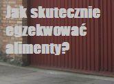 Twój były mąż/partner nie płaci alimentów,a potrzebujesz tych pieniędzy i chcesz je wyegzekwować? http://www.szczecin-adwokat.com/alimenty.php