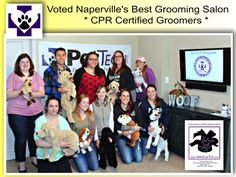 """The UpScale Tail, Pet Grooming Salon, Naperville, IL www.theupscaletail.com """"Vote best pet grooming salon"""""""