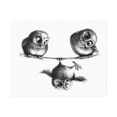 Three Owls - Freedom and Fun Canvas Print zeichnung, Three Owls - Freedom and Fun Leinwand Drucke Illustration Mignonne, Illustration Art, Illustrations, Owl Tattoo Design, Tattoo Designs, Tattoo Ideas, Buho Tattoo, Tattoo Owl, Baby Owl Tattoos
