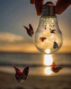 A fun image sharing community. Explore amazing art and photography and share your own visual inspiration! Scenery Wallpaper, Cute Wallpaper Backgrounds, Pretty Wallpapers, Cool Wallpaper, Creative Photography, Amazing Photography, Nature Photography, Butterfly Wallpaper, Galaxy Wallpaper