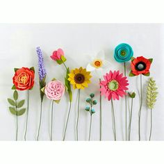 Felt flower variety