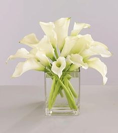 Few fresh cut flowers offer the elegance and versatility of the calla lily. If you are designing your own wedding bouquet, centerpieces or arrangements, the calla lily will provide all of the style… Calla Lily Centerpieces, Simple Centerpieces, Wedding Table Centerpieces, Wedding Flower Arrangements, Floral Arrangements, Wedding Decorations, Centerpiece Ideas, Wedding Ideas, Decor Wedding