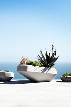 A modern concrete planter design, contemporary and unusual but rather stylish perfect for succulents and flowers alike....