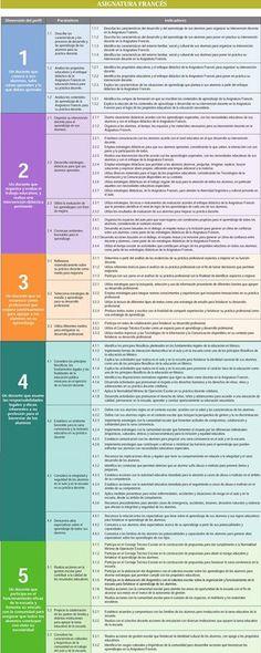 Perfil, Parámetros e indicadores Asignatura Frances