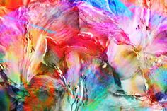 Abstract art for sale by Jaison Cianelli. Buy abstract energy art canvas prints for the home. Abstract Flower Art, Abstract Art Painting, Abstract Artists, Flower Art Painting, Abstract Art Wallpaper, Art Background, Art Paintings For Sale, Abstract Canvas Art, Abstract