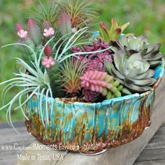 Succulent Pottery Pot That is hand built, organic, ceramic planter pot, planter pot, flower pot, green thumb gift, cactus pot