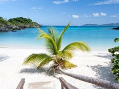 """The secluded and """"breathtakingly unspoiled"""" Trunk Bay is """"simply fabulous,"""" our readers rave. Draws include the crystal clear sea, powder-white sand, and """"great water activities."""""""