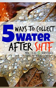 5 Ways to Collect Water after SHTF 5 Ways to Collect Water After SHTF – Some genious water collecting ideas here! Related Crafty Emergency Preparedness Hacks for Your Family SurvivalCouch Potato Bushcrafting:. Survival Blog, Survival Quotes, Homestead Survival, Survival Tools, Wilderness Survival, Survival Prepping, Emergency Preparedness, Survival Supplies, Survival Hacks