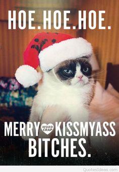 Ideas funny christmas memes humor hilarious grumpy cat for 2019 Funny Merry Christmas Memes, Funny Christmas Images, Christmas Quotes For Friends, Grumpy Cat Christmas, Christmas Humor, Christmas Sayings, Christmas Images For Facebook, Christmas Christmas, Grumpy Cat Quotes