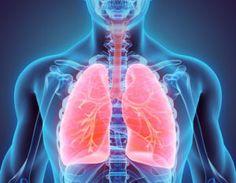 Meistens hört man von der Reinigung des Darms, des Blutes oder der Haut, aberauch die Lungen nehmen beim Inhalieren der Luft um uns herum täglich Schadstoffe auf,die sich in den Lungen mit der Zeit wie Schmutz ablagern und so die Elastizität der Lungen reduzieren und Krankheiten verursachen können. Bild:© yodiyim/ Fotolia.com Nicht nur aktives oder