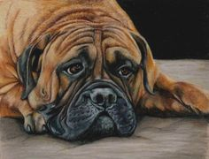 One of my colored pencil drawings. #art #dog