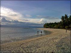 The Powdery White Sands of Lambug Beach at Badian Cebu