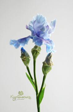 Ирис из холодного фарфора. Шикарный подарок в каталоге Для дома на Uniqhand - оригинальный подарок, голубой, подарок на новоселье, холодный фарфор