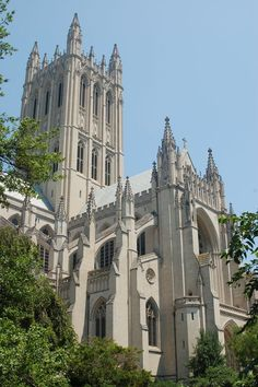 Photos can't express her beauty.  I would make a yearly pilgrimage if I could.  Washington National Cathedral