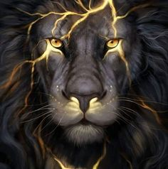 Lion Gold Poster, Banner or Canvas for sale.This Lion poster is printed on premium stock poster and is shipped to your door within days.The banners come with tw Animals And Pets, Cute Animals, Wild Animals, Lion Wallpaper, Animal Wallpaper, Black Wallpaper, Lion Pictures, Lion Of Judah, Lion Art