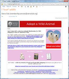 Sierra Club - Adoption Catalog - Email Campaign Sierra Club, Email Campaign, E Cards, Non Profit, Fundraising, Adoption, Catalog, Valentines, Foster Care Adoption