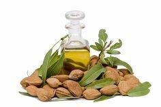 Rahsia Sebenar Minyak Almond Yang Sememangnya Bagus Untuk Kulit | http://www.wom.my/kesihatan/petua-pemakanan/rahsia-minyak-almond/
