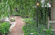 Valg af træer og buske til den nemme have - Bolius