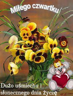 Good Morning, Teddy Bear, Humor, Buen Dia, Bonjour, Humour, Teddy Bears, Funny Photos, Funny Humor