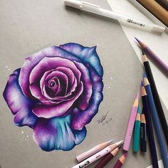 Hello Everyone here s this pink purple blue rose drawing i did this took a lot longer than i expected but hey i guess it turned out decent lolll hope you like this drawinggg made with prismacolor pencils on strathmore toned gray paper # Cute Drawings, Pencil Drawings, Horse Drawings, Colored Pencil Techniques, Toned Paper, Color Pencil Art, Pink Purple, Pink Lila, Colored Pencils