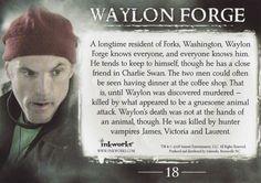Waylon Forge ♥ (02)